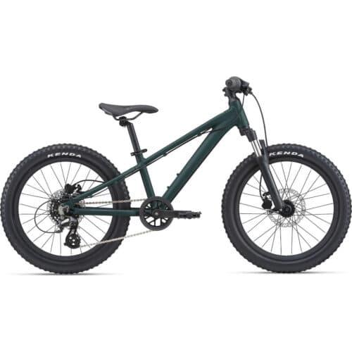 Giant STP 20 FS Mountainbike 2021